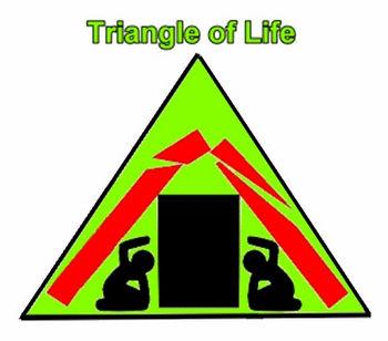 l8不靠谱的生命三角理论