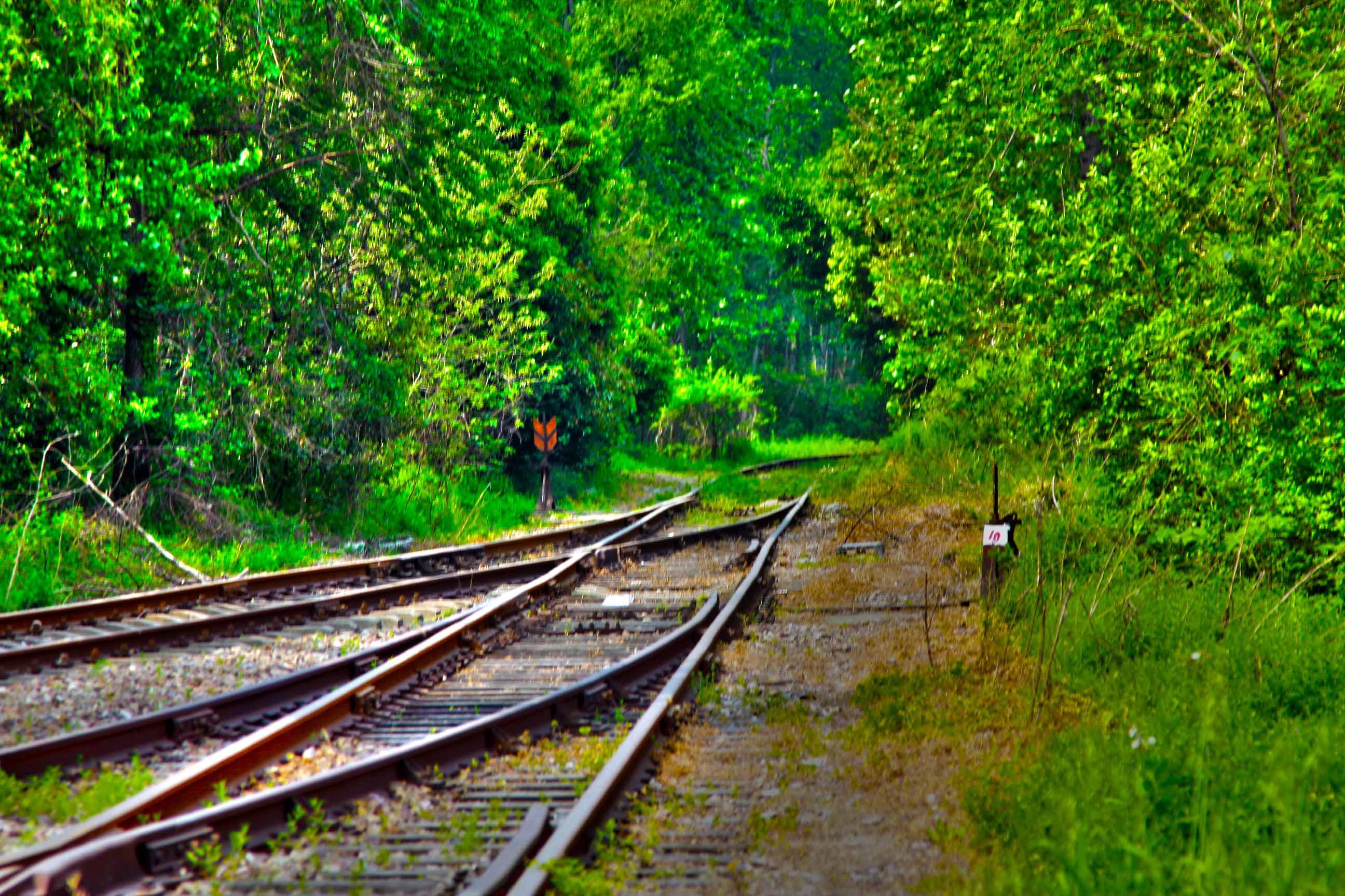 4.17日 废弃的铁路