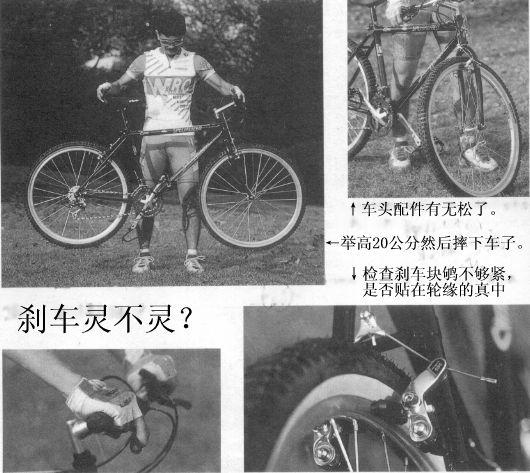 第4课 山地车骑行技巧 一 骑行姿势 自行车骑行入门