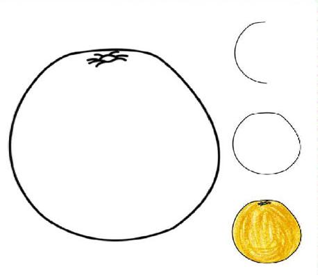 水果-柚子 - 教宝宝画画