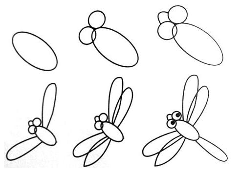 动物-蜻蜓 - 教宝宝画画
